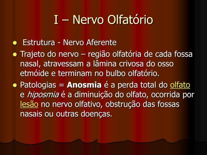 I – Nervo Olfatório