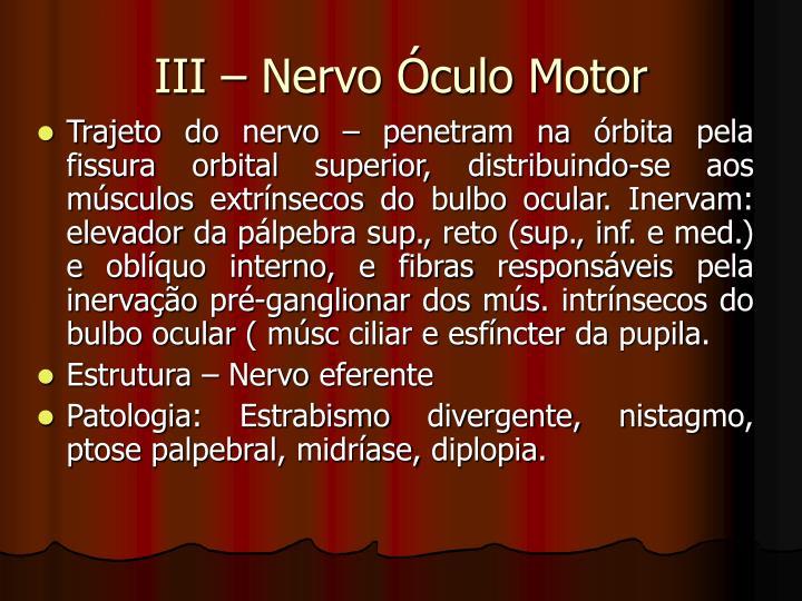 III – Nervo Óculo Motor