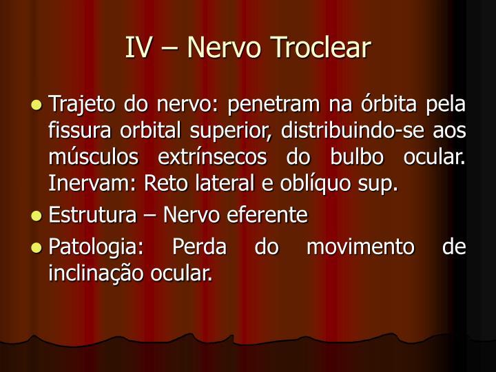 IV – Nervo Troclear