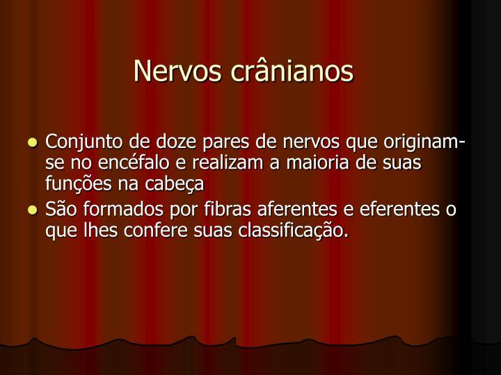 Nervos crânianos