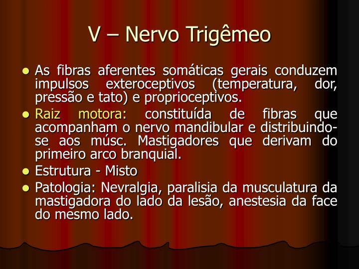 V – Nervo Trigêmeo