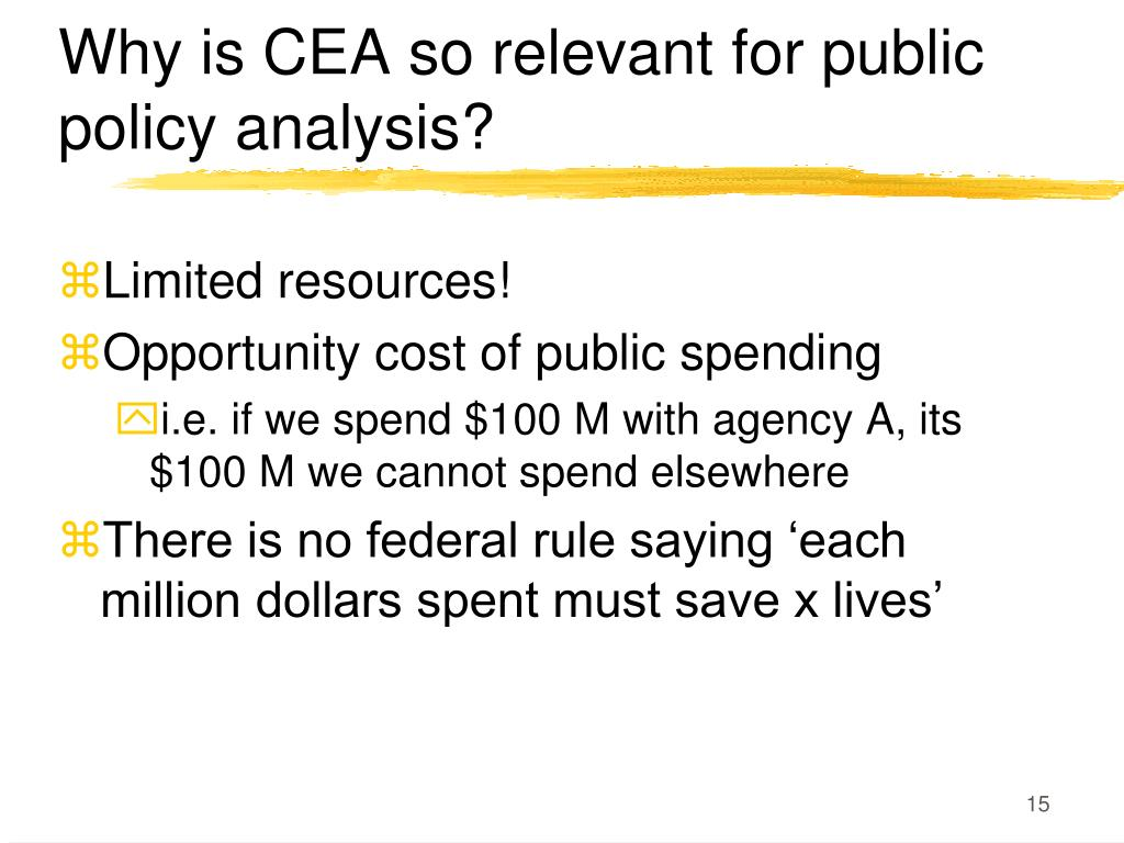 Why is CEA so relevant for public policy analysis?