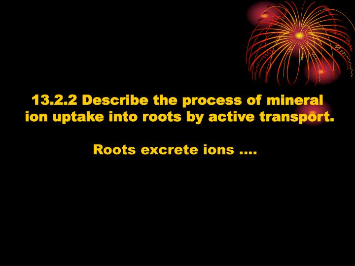13.2.2 Describe the process of mineral
