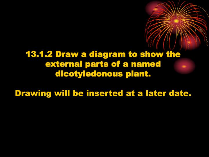 13.1.2 Draw a diagram to show the