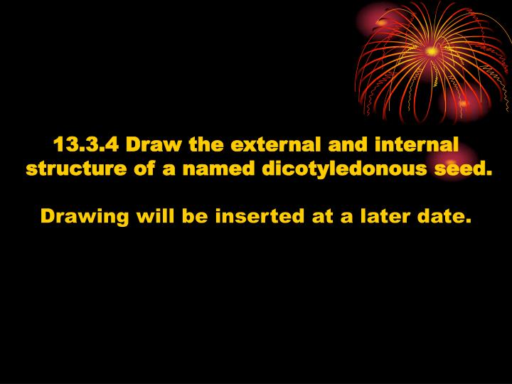 13.3.4 Draw the external and internal