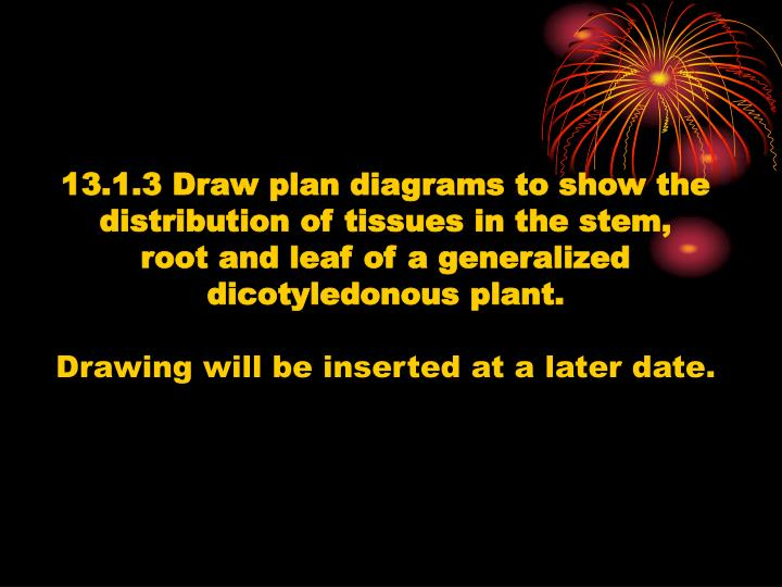 13.1.3 Draw plan diagrams to show the
