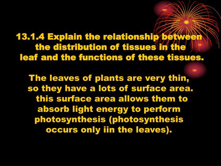 13.1.4 Explain the relationship between