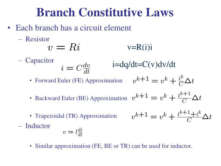 Branch Constitutive Laws