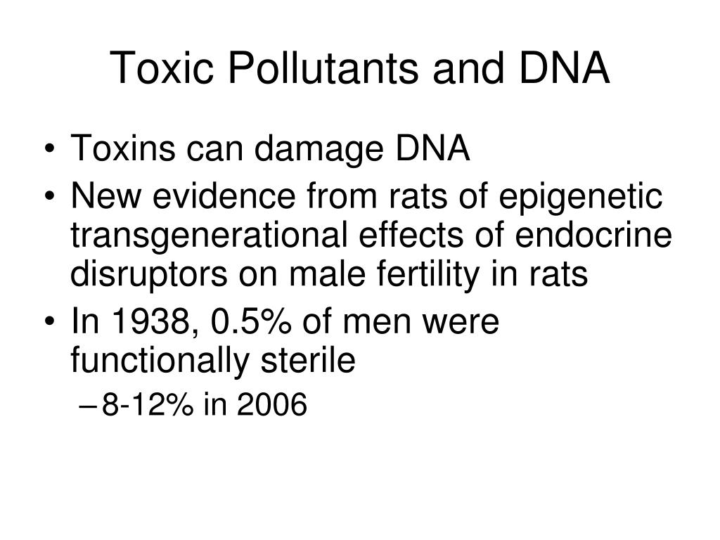 Toxic Pollutants and DNA
