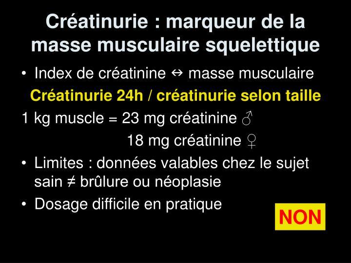 Créatinurie : marqueur de la masse musculaire squelettique