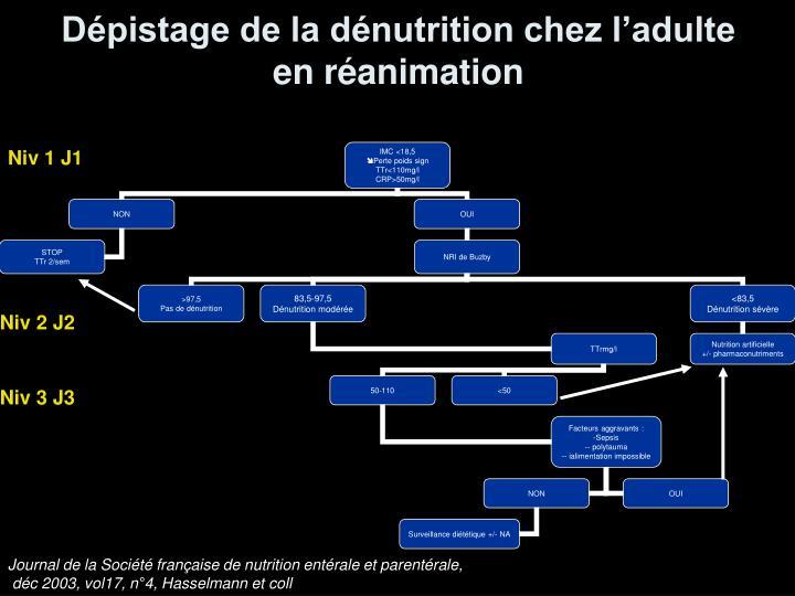 Dépistage de la dénutrition chez l'adulte en réanimation
