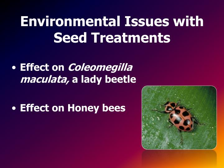 Environmental Issues with Seed Treatments