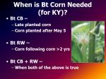 when is bt corn needed for ky