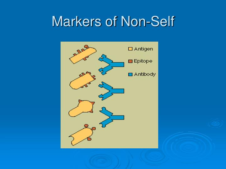 Markers of Non-Self