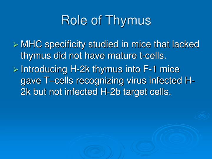 Role of Thymus