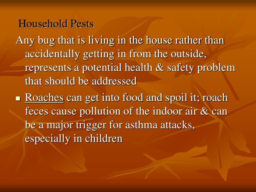 Household Pests