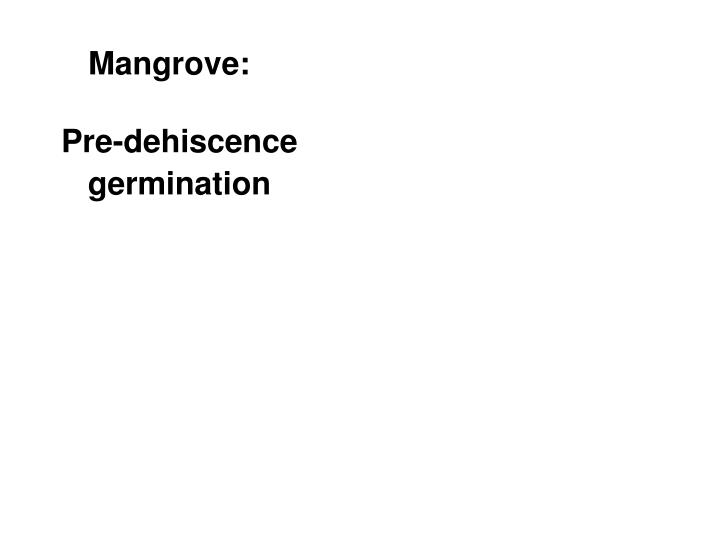 Mangrove: