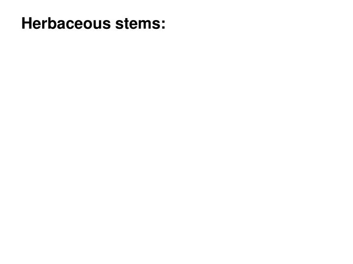 Herbaceous stems: