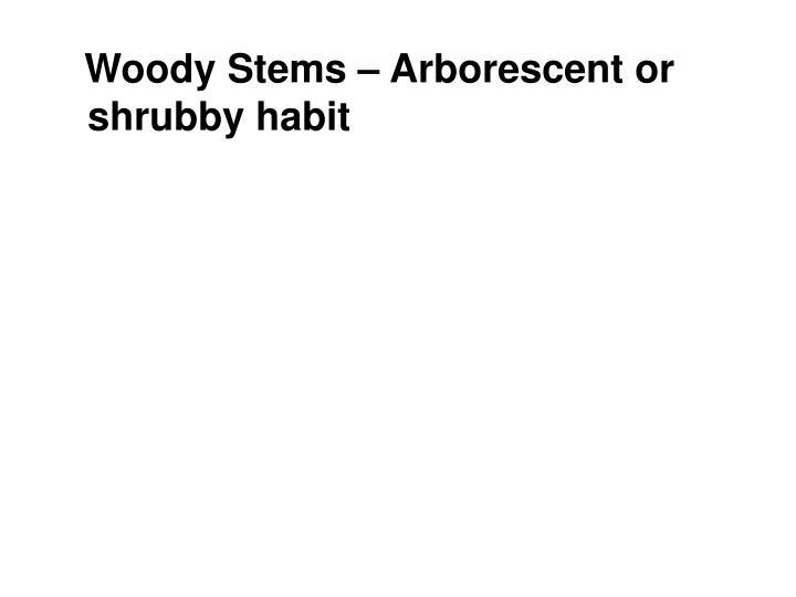 Woody Stems –