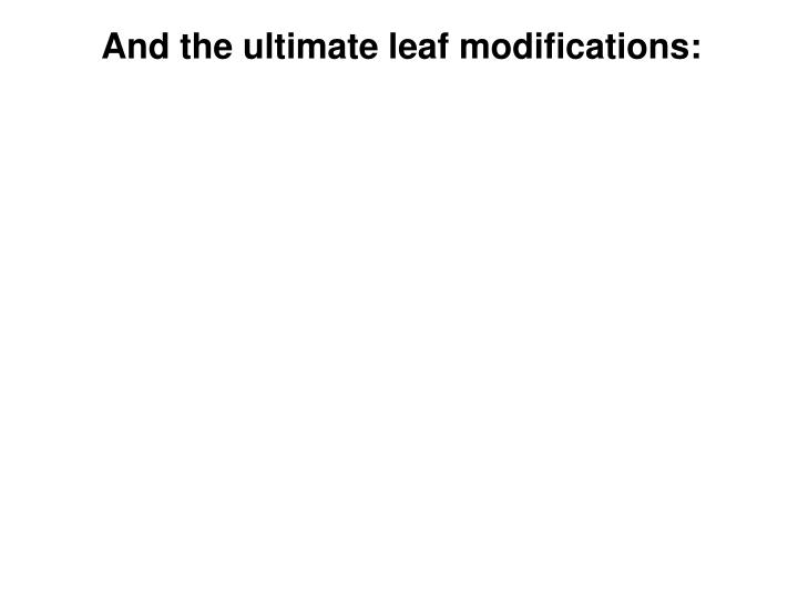 And the ultimate leaf modifications: