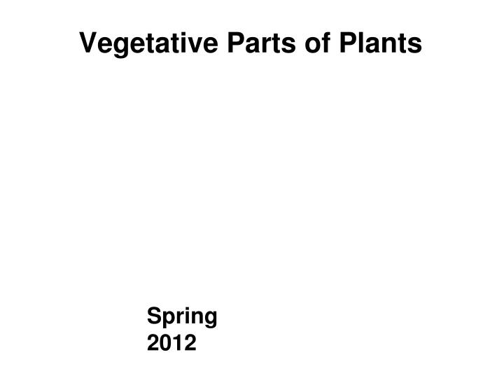Vegetative parts of plants
