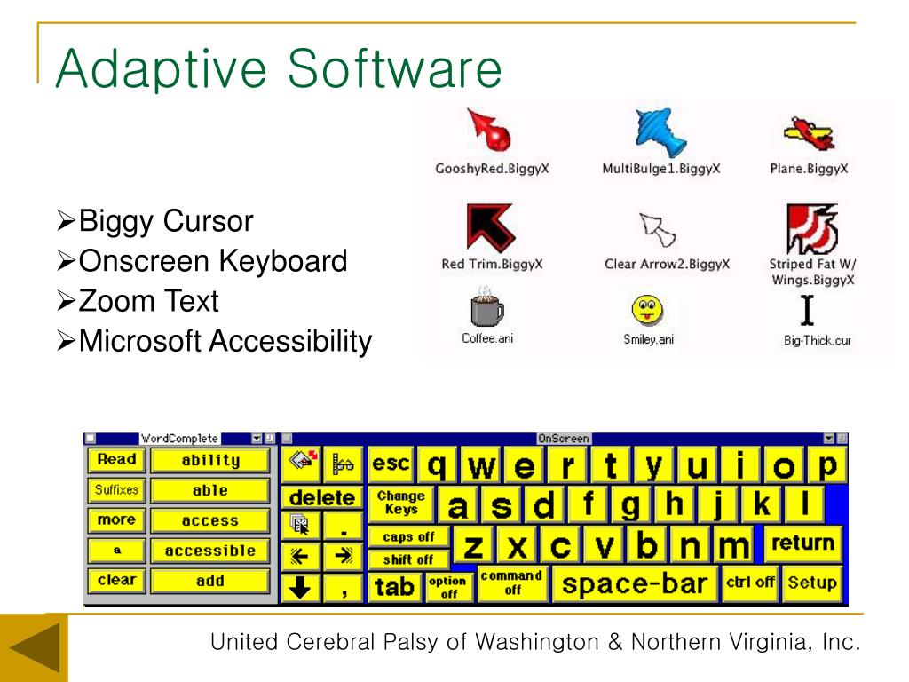 Adaptive Software