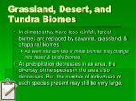 grassland desert and tundra biomes