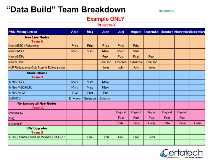 """Data Build"" Team Breakdown"