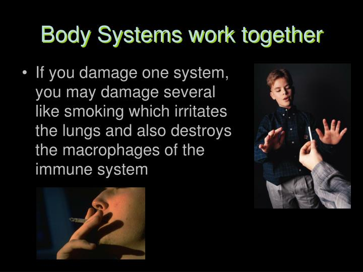 Body Systems work together