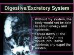 digestive excretory system
