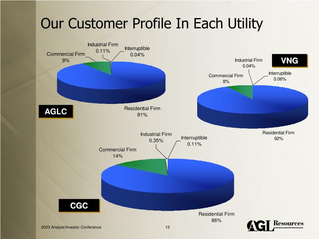 Our Customer Profile In Each Utility