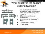 what exactly is the nudura building system5