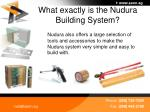 what exactly is the nudura building system6