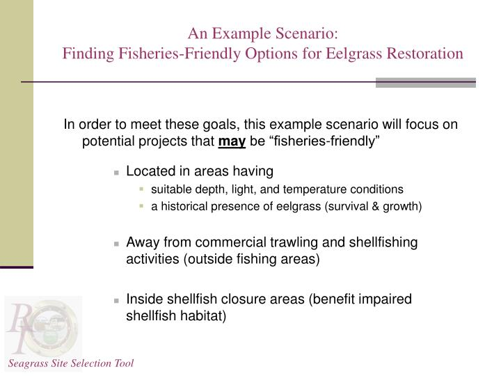 An example scenario finding fisheries friendly options for eelgrass restoration1
