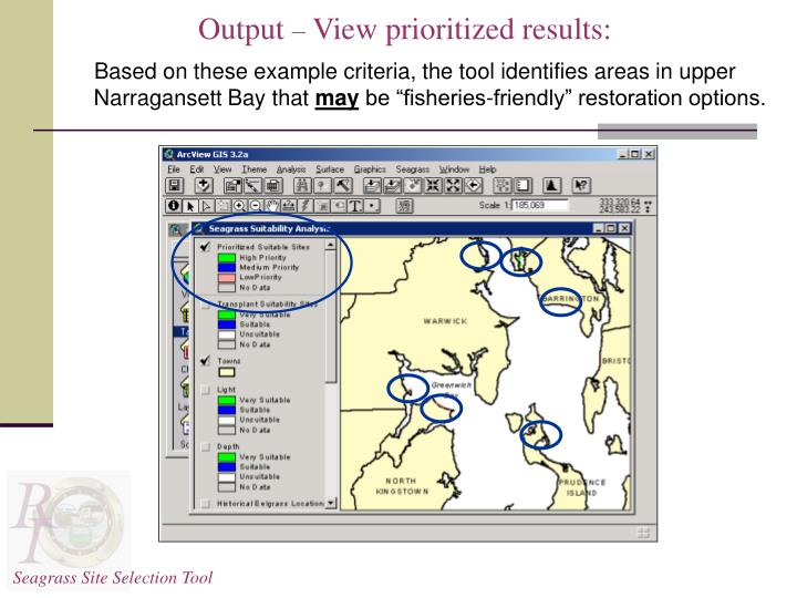 Seagrass Site Selection Tool