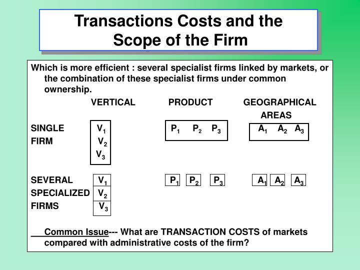Transactions costs and the scope of the firm