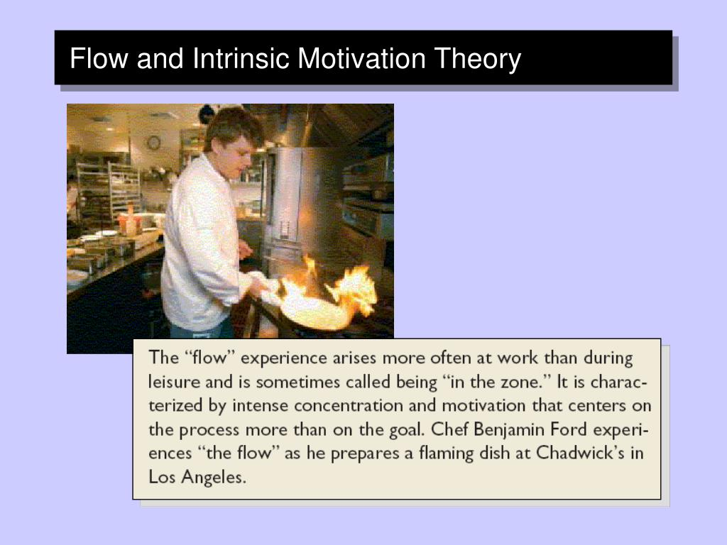 Flow and Intrinsic Motivation Theory