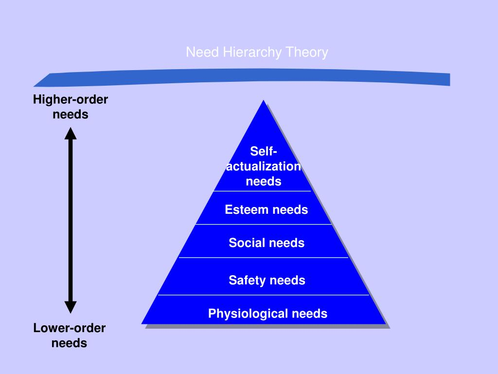 Need Hierarchy Theory