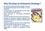 why develop an enterprise strategy