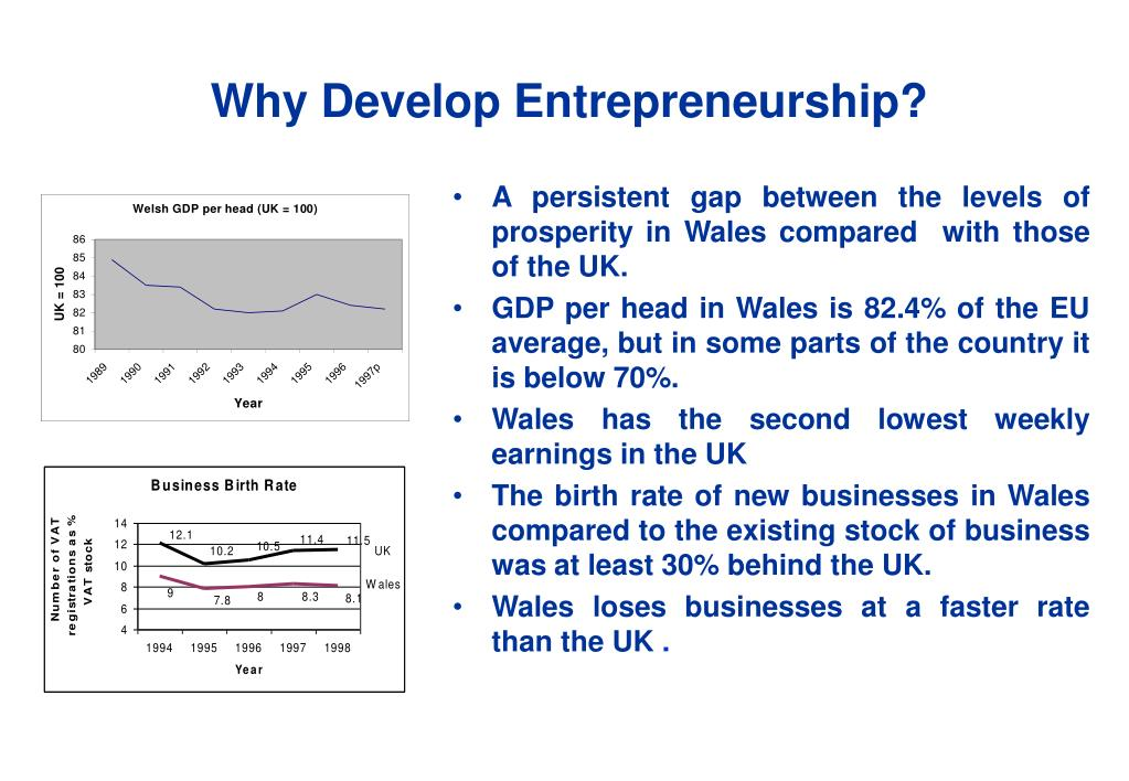 Why Develop Entrepreneurship?