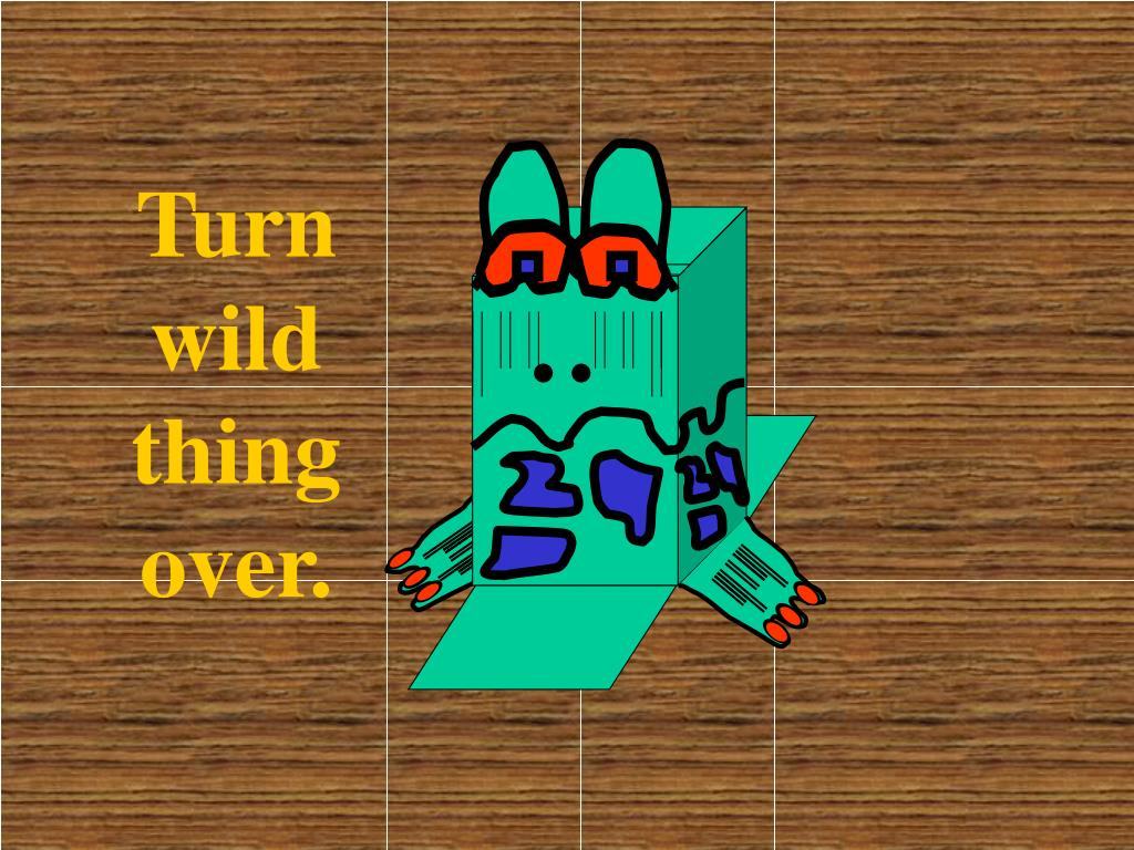 Turn wild thing over.