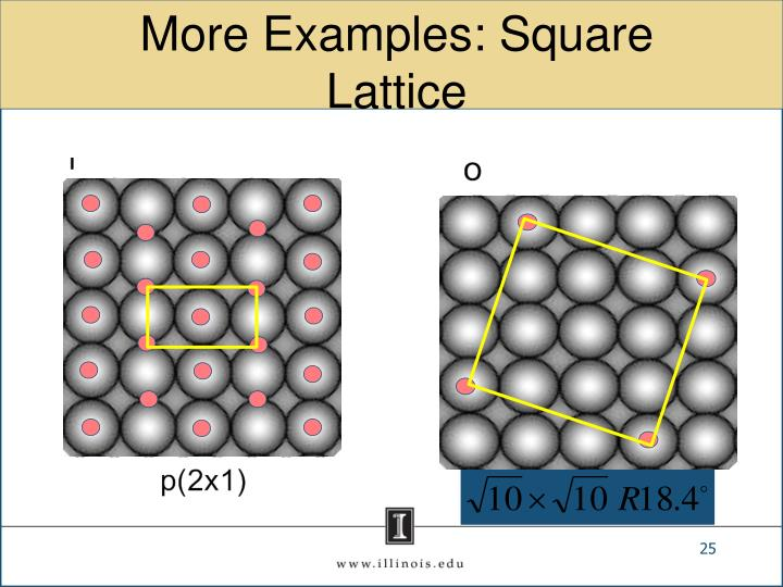 More Examples: Square Lattice
