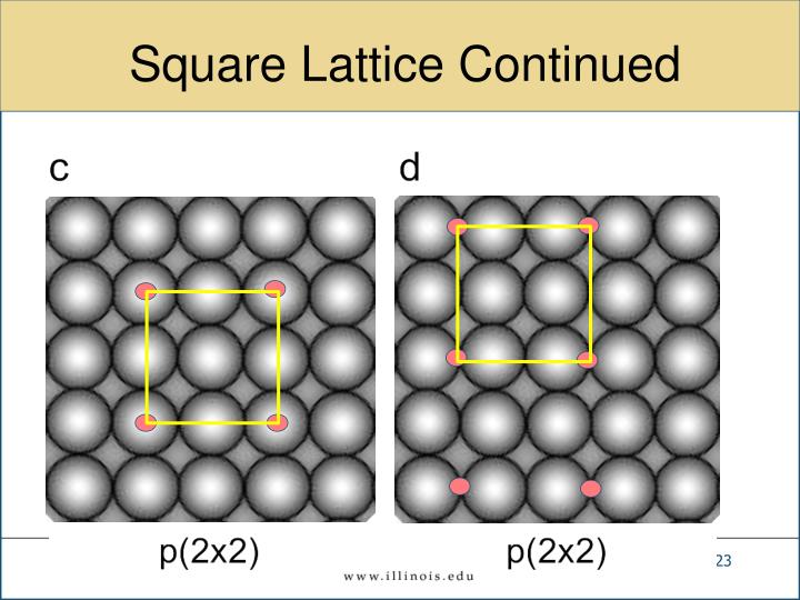 Square Lattice Continued