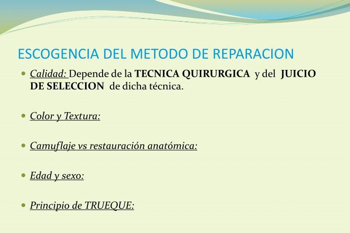 ESCOGENCIA DEL METODO DE REPARACION