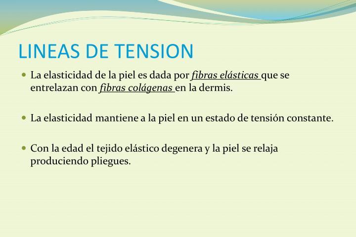 LINEAS DE TENSION