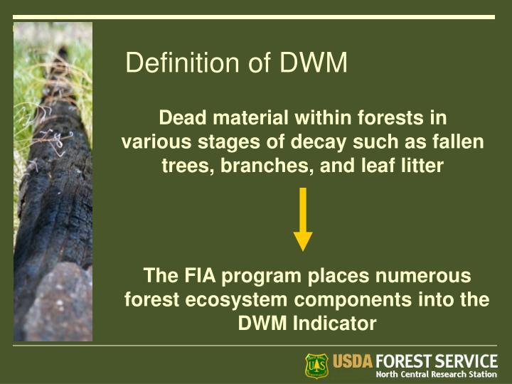 Definition of DWM