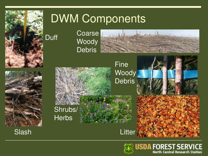 DWM Components