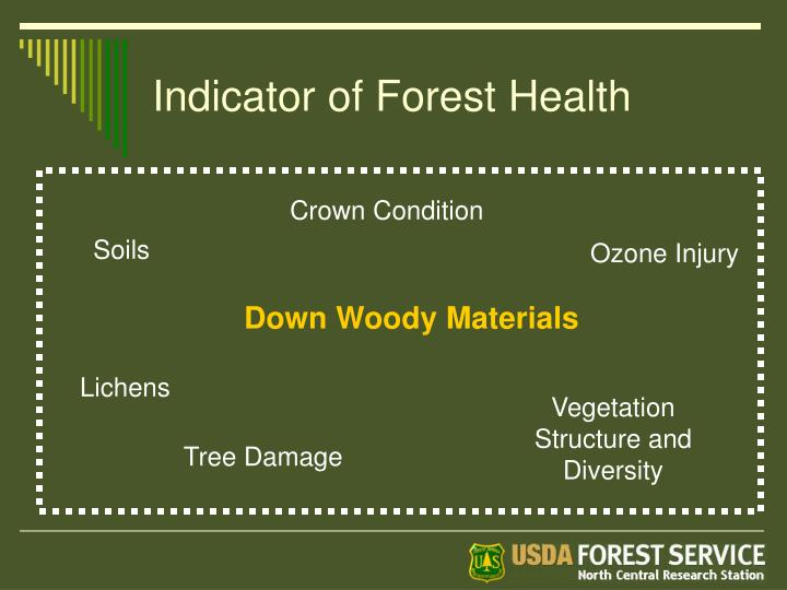 Indicator of Forest Health