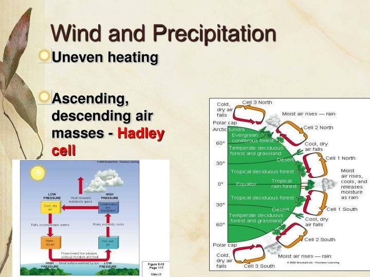 Wind and Precipitation