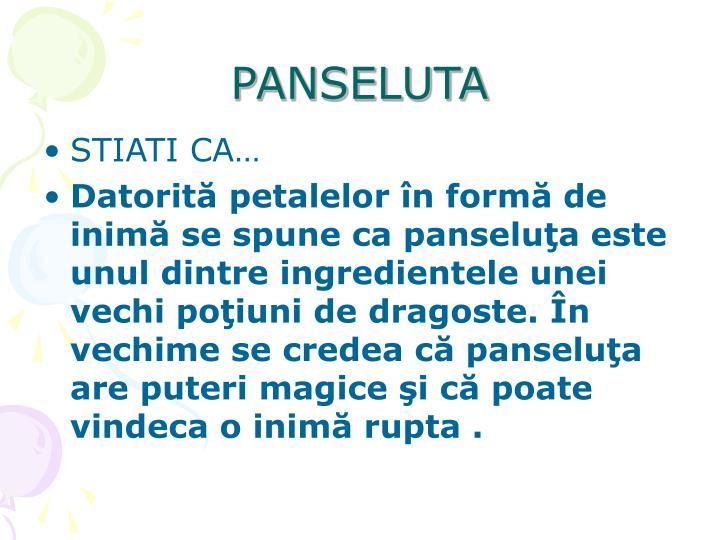 PANSELUTA